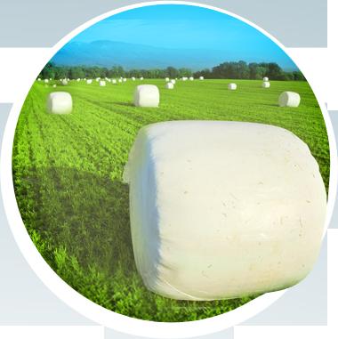 produkty_rolnictwo